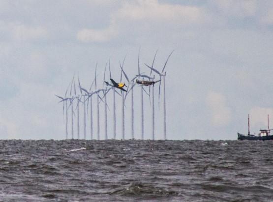 filmen dunkirk Westermeerwind1