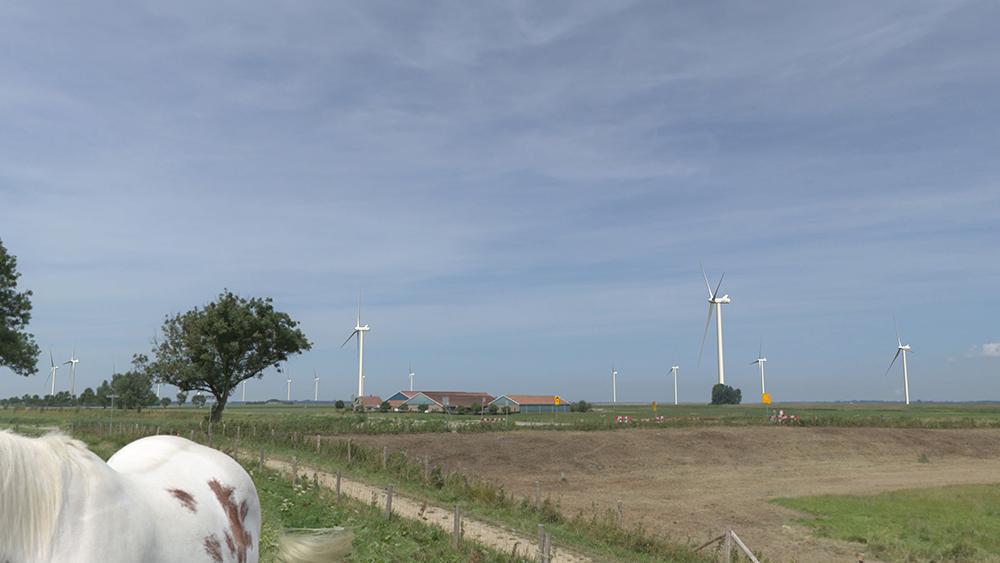 Gemeenteraad Goeree-Overflakkee stemt in met bestemmingplan Windpark Kroningswind
